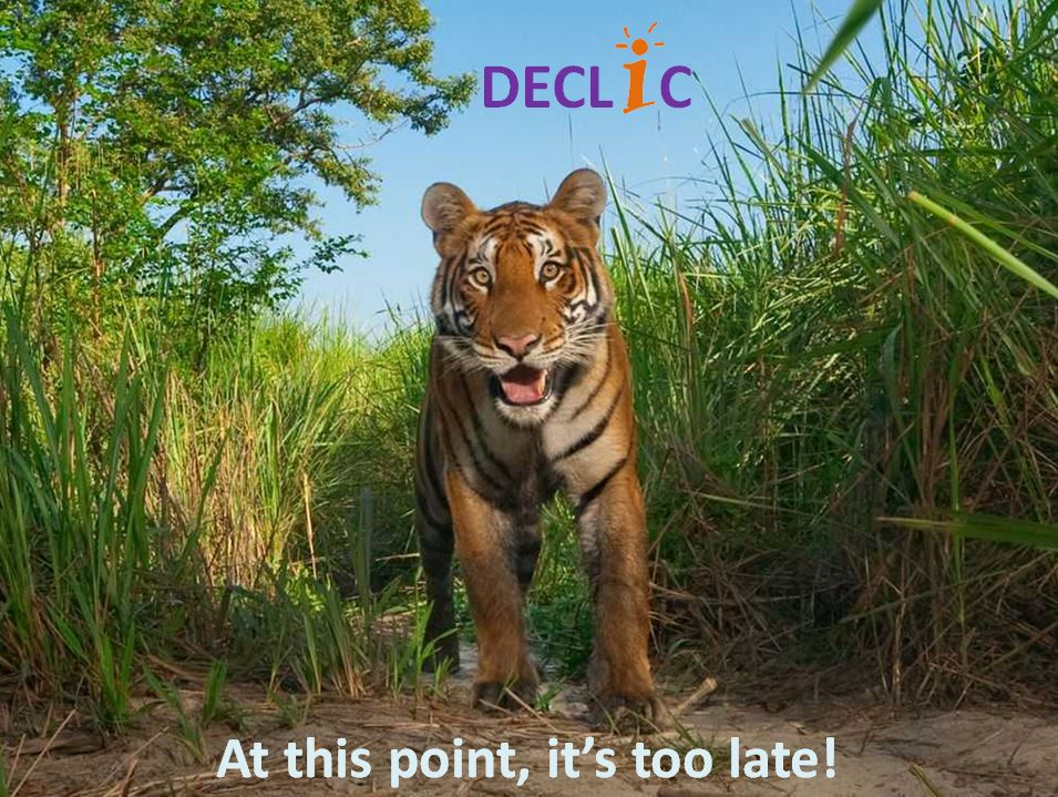 DECLIC, a 1-day training that boost innovation!